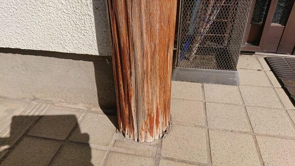 シロアリに食われた化粧柱