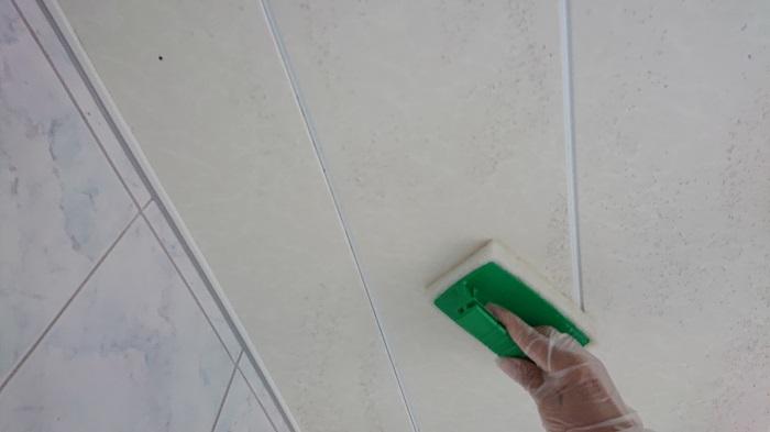 浴室天井清掃