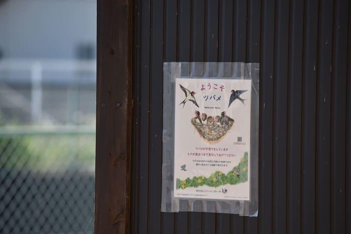 ツバメを歓迎する張り紙
